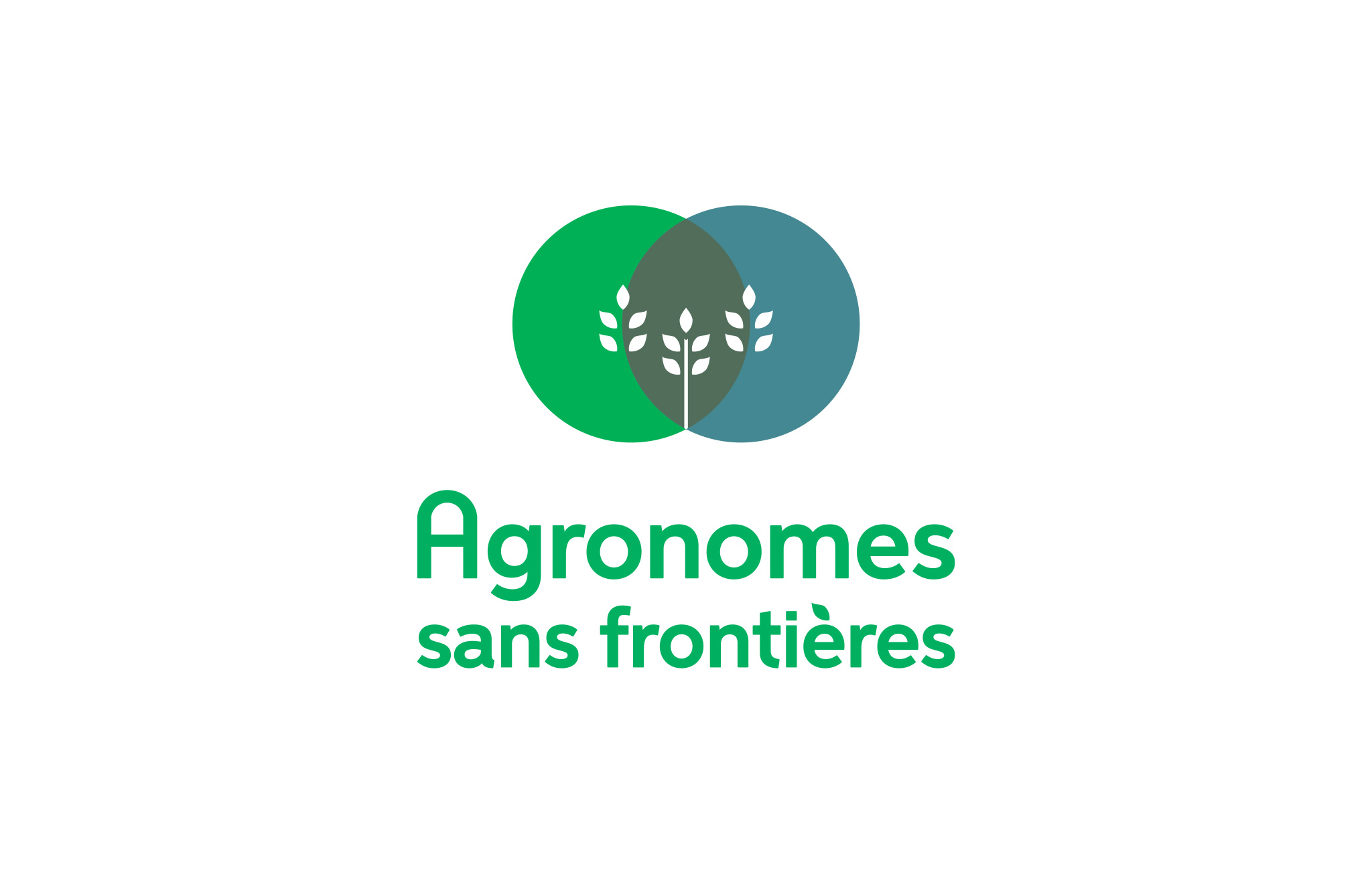 Identité visuelle du nouveau programme Agronomes sans frontières de Suco.